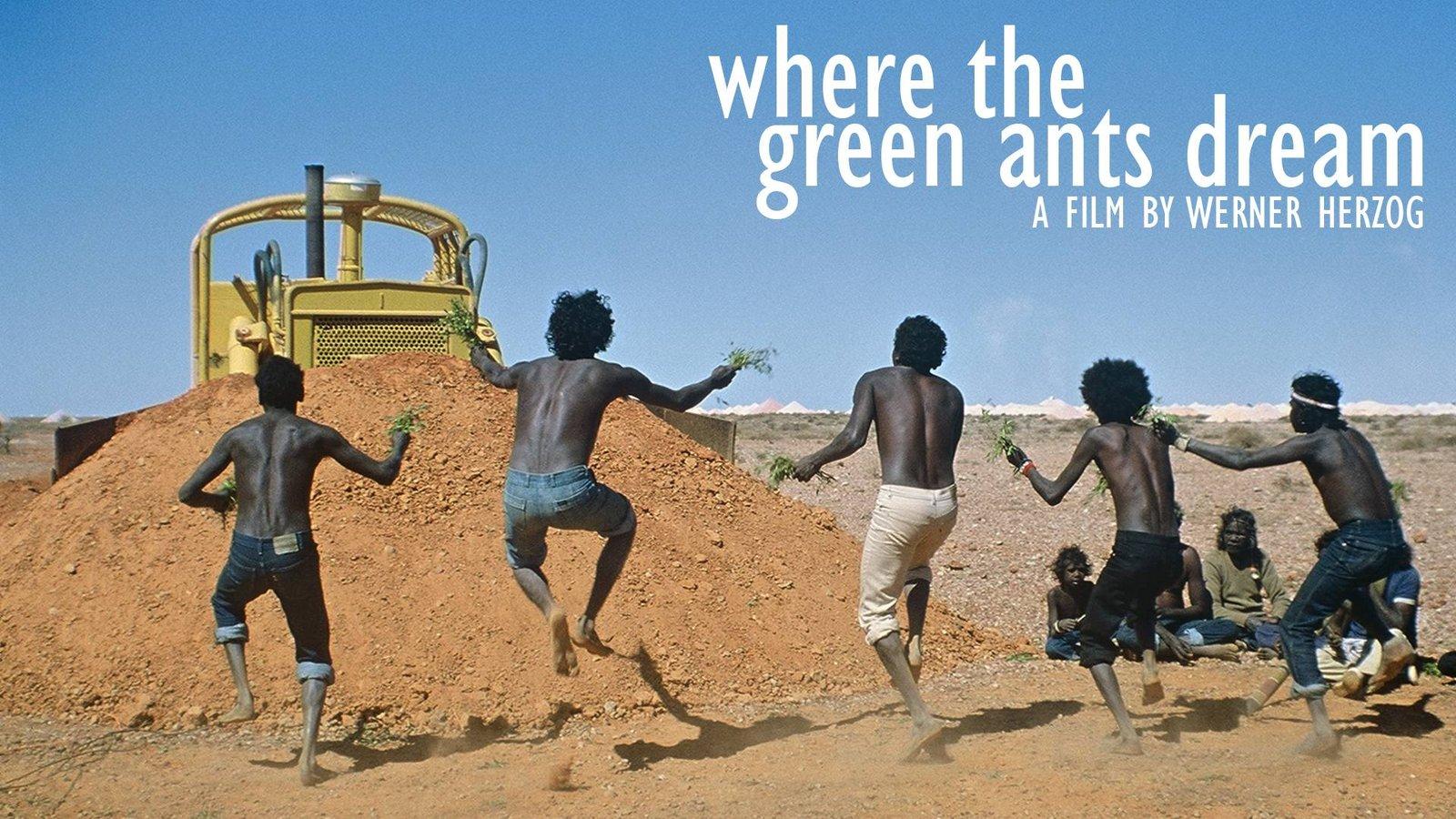 Where The Green Ants Dream