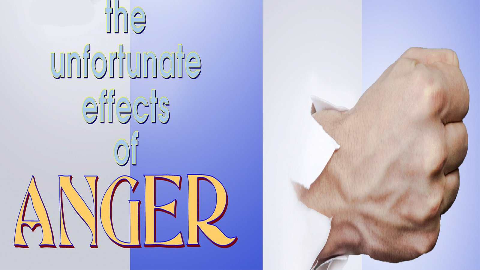 Employee Training: The Effect of Anger